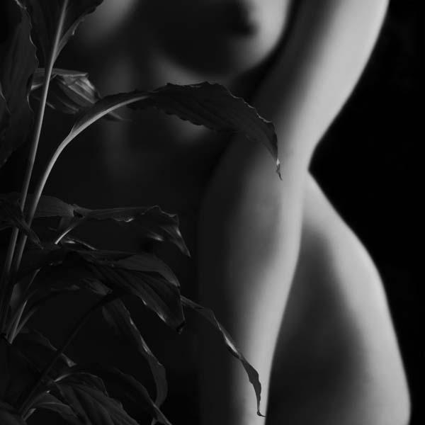 Lively softly foto Cristina Pascu