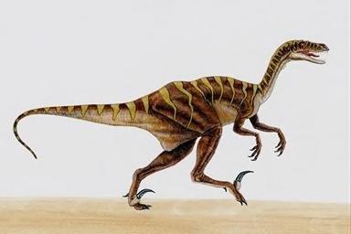 dinossauros nas autarquias
