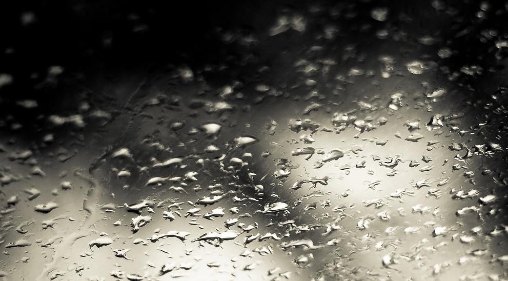chove