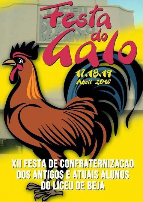 Cartaz da XII Festa do Galo