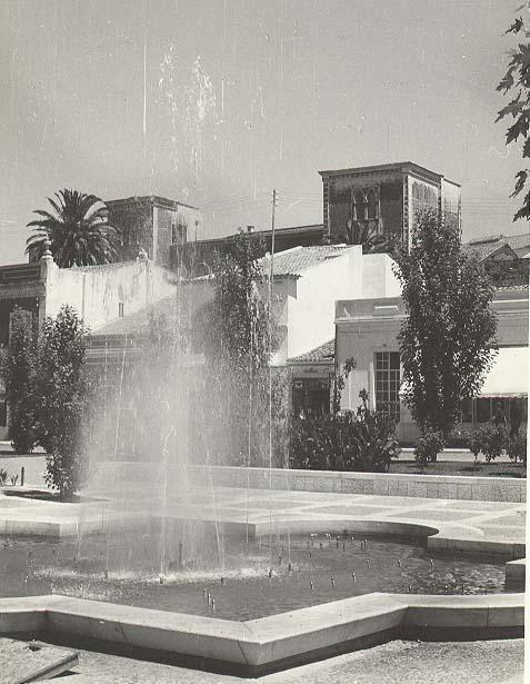 jard bacalhau 1960
